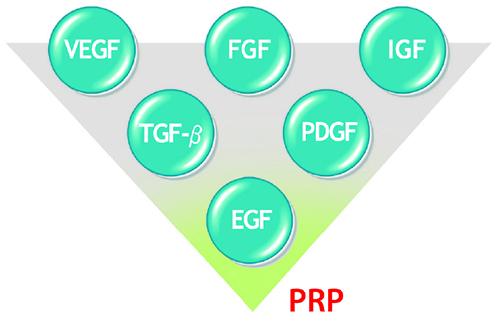 кнопки треуг фактора роста.jpg